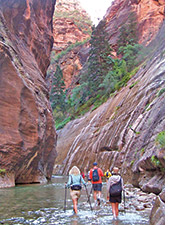 Zion Canyon multisport photo